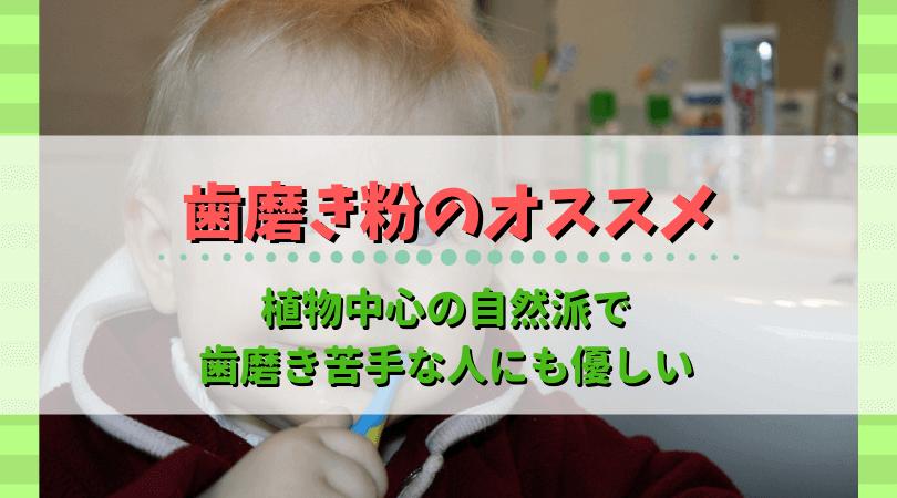 フッ素無添加歯磨き粉、iHerb